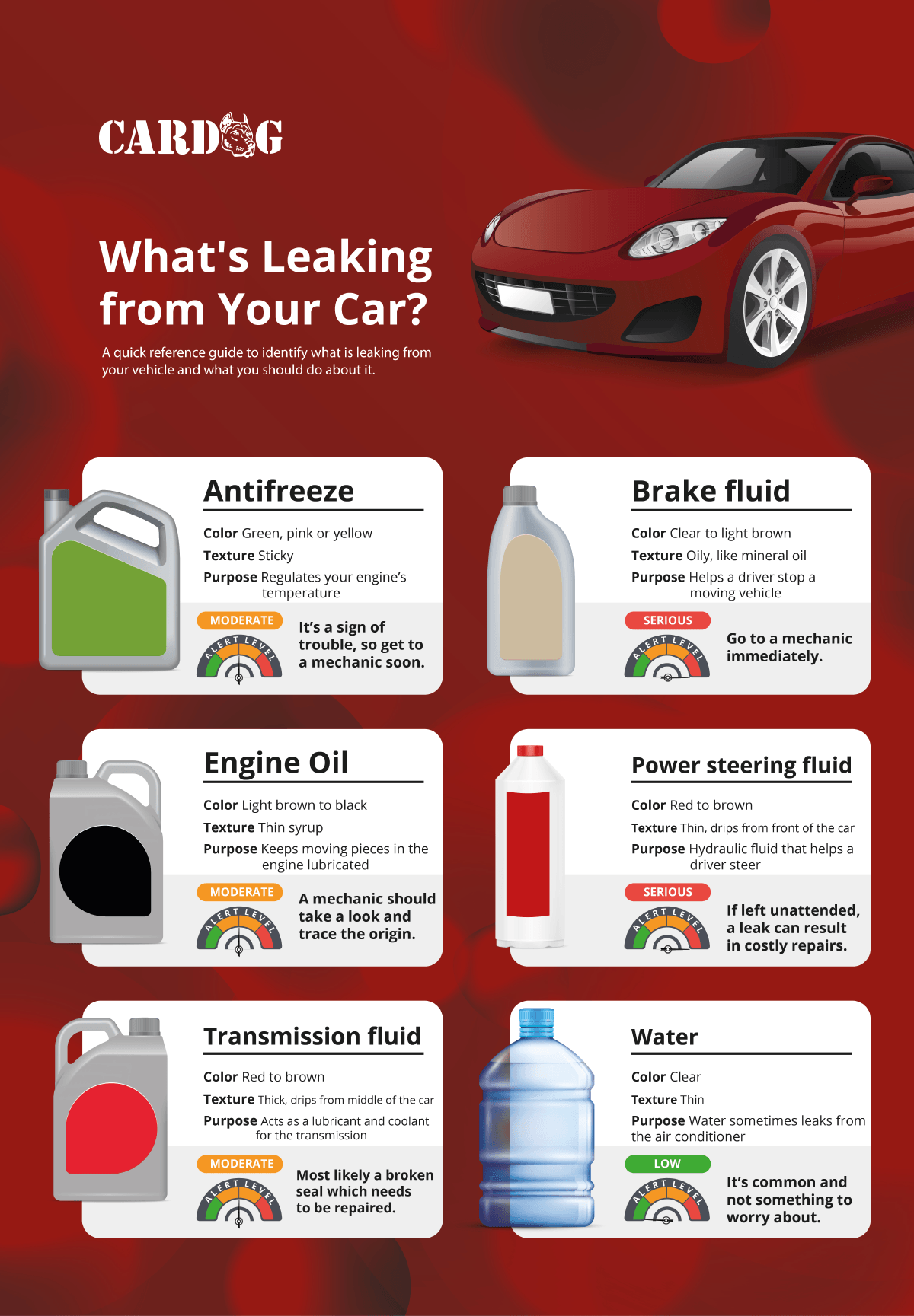 What is Leaking from your Car